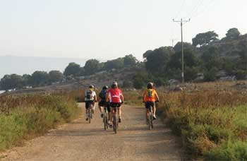 לפני גבעה עם אלונים פונים ימינה לדרך סלולה