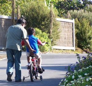 אב מלמד את בנו רכיבה על אופניים